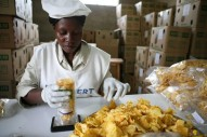 chip's camerounais à vendre